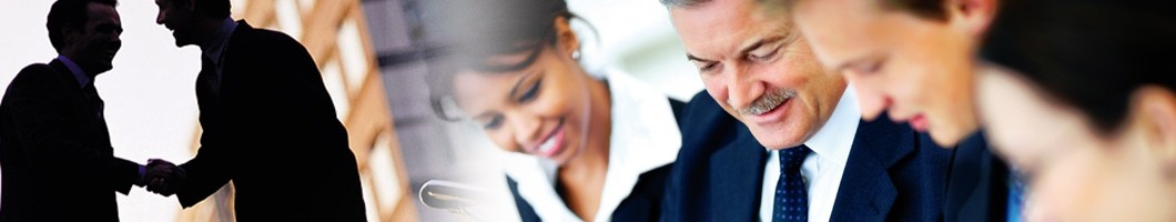 PROFESSIONAL SERVICES PROVIDERS